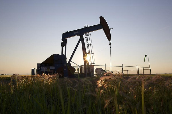Daily Wrap-up: Oil gains 13 per cent but still ends below $30