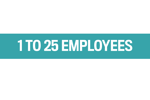 1 to 25 EMPLOYEES