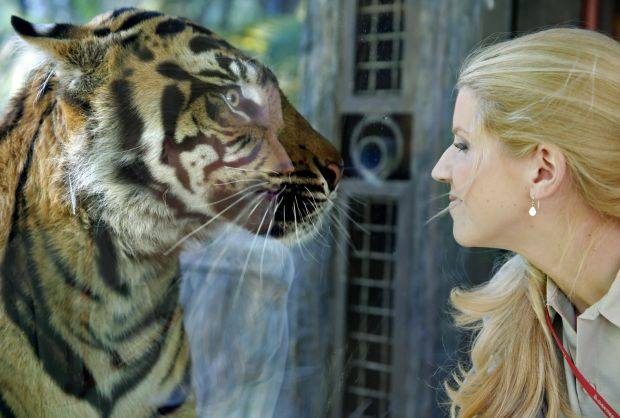 Creating world-class human policies at the San Diego Zoo