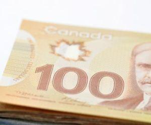 New Canadians emerge as affluent but demanding market