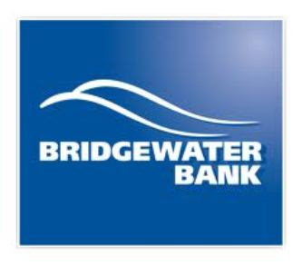 New products, revamped SLA to fast track Bridgewater Bank deals