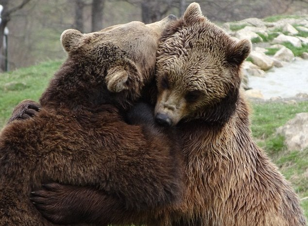 The Big Story: Getting a bear hug on clients