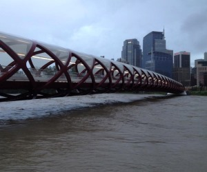 Coping with Calgary: stories and lessons from the flood zone