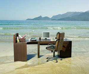 The Bliss Point: why your office is empty in summer