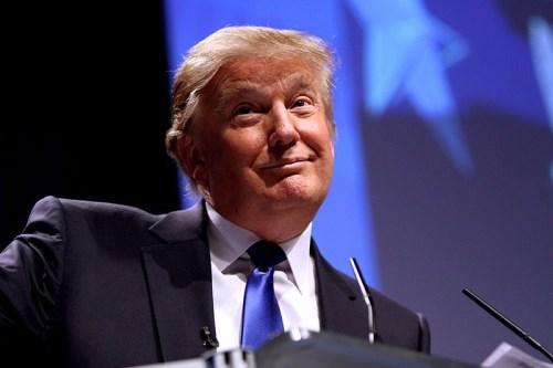 Trump's win prompts immigration overload