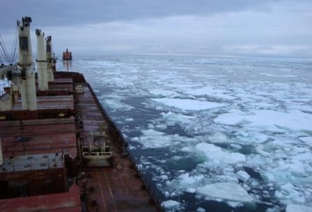 Arctic drilling 'risky'