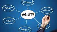 From leadership development to business agility