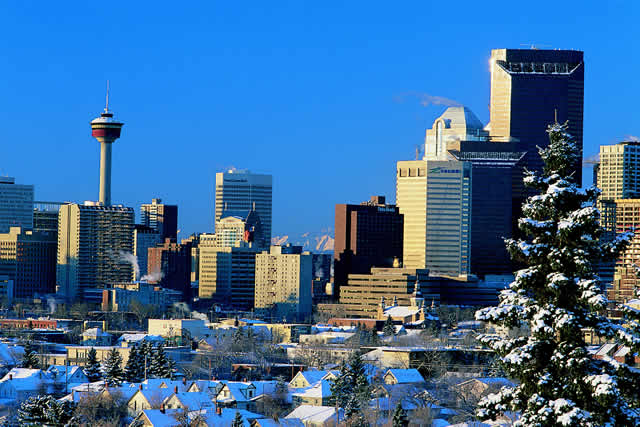 December sales up over last year, no thanks to Calgary