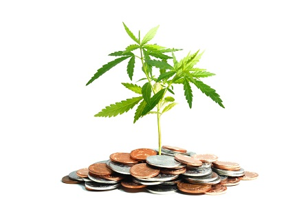 Sprott engages in cannabis joint venture