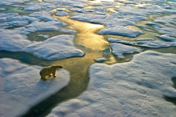 Why long-term investors must weigh climate-change risks