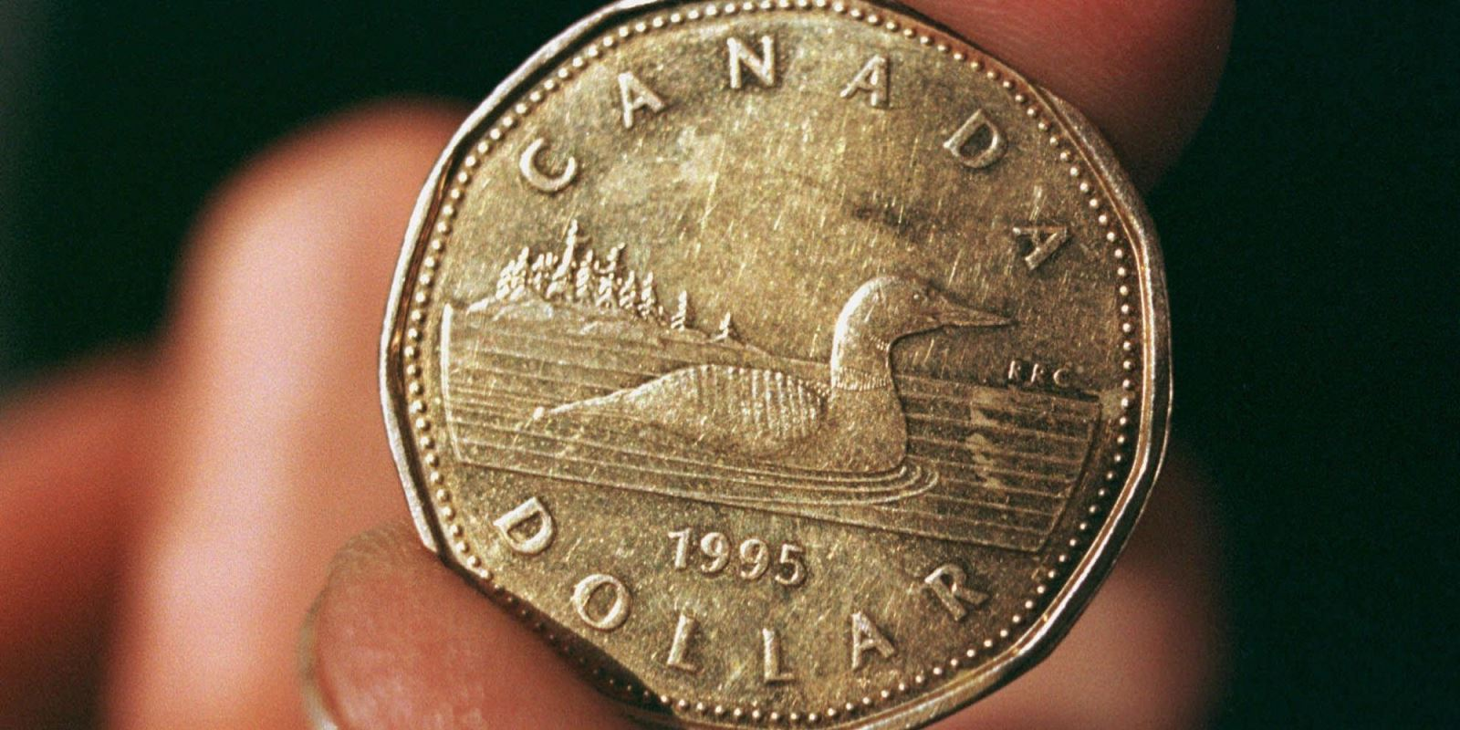Loonie hits a 5 year low