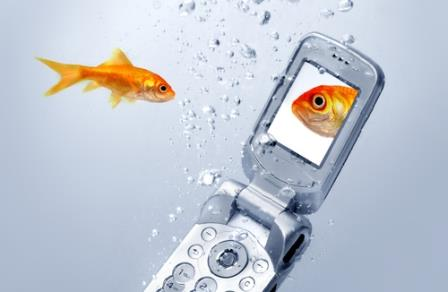 New poll: How do you vacation in the smart phone age?