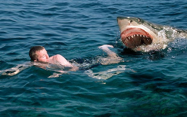 Swimming with the sharks without being eaten alive