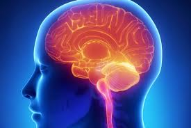 How your workplace can harm your brain function